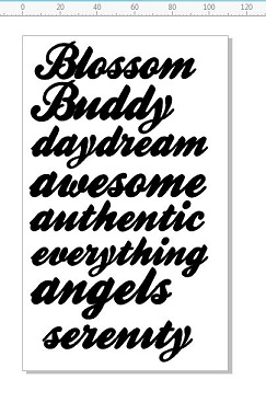 BLOSSOM BUDDY  WORDS 110 X 180MM MIN BUY 3