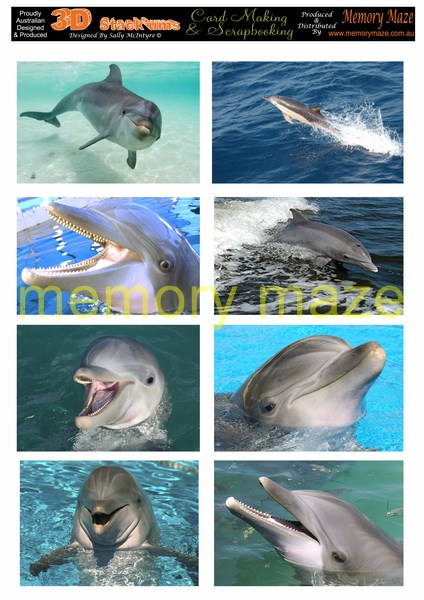 DS0708 DOLPHINS 2  min buy 5  cut out with your nested dies