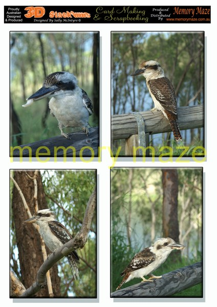 DS0711 Kookaburras  min buy 5 cut out with your nested dies