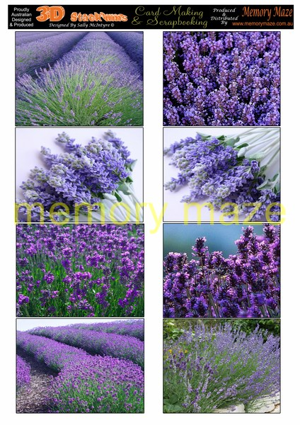 DS0712 lavender  min buy  can be cut out with your nested dies