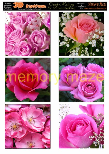 DS0717   Pink roses   min buy 5 can be cut out with nested dies