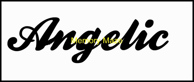 Angelic 100 x 30  packs of 10 Memory Maze