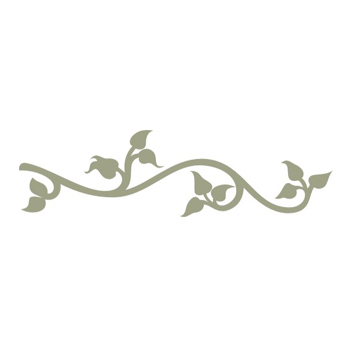 Climbing Vine  flourish   Sold in 3\'s