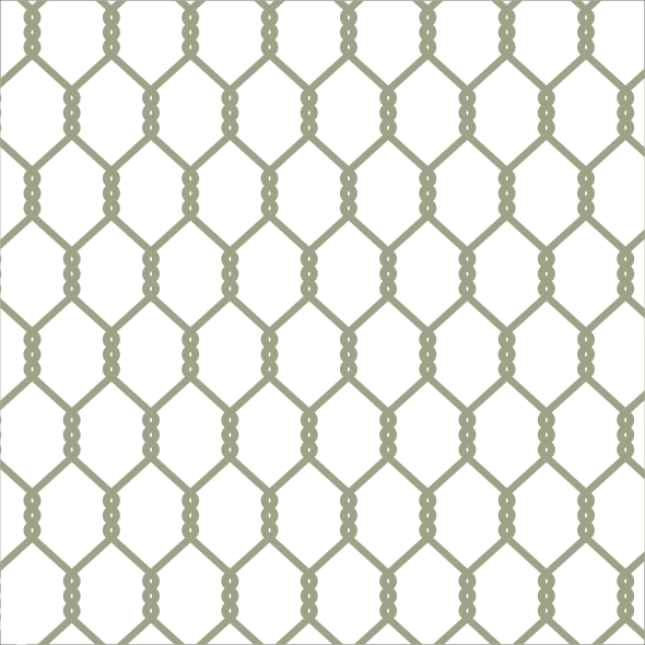 Chicken Wire Large