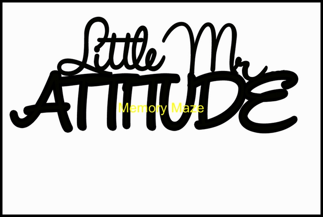 Little Mr attitude 120 x 75 mm min buy 3