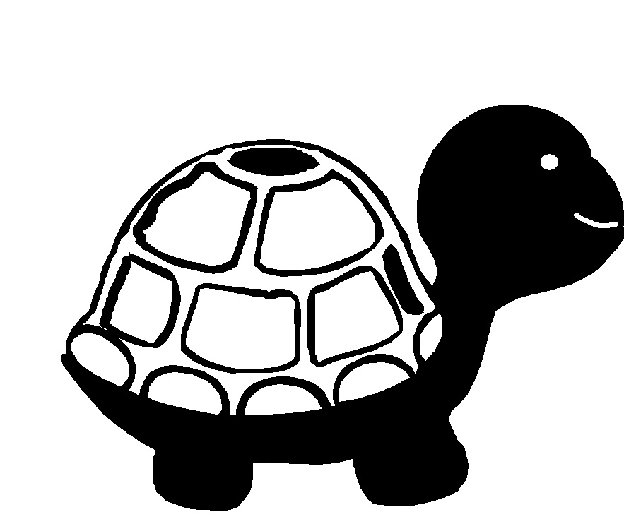 Tortoise 54 x 71 pack of 10 card or mini size