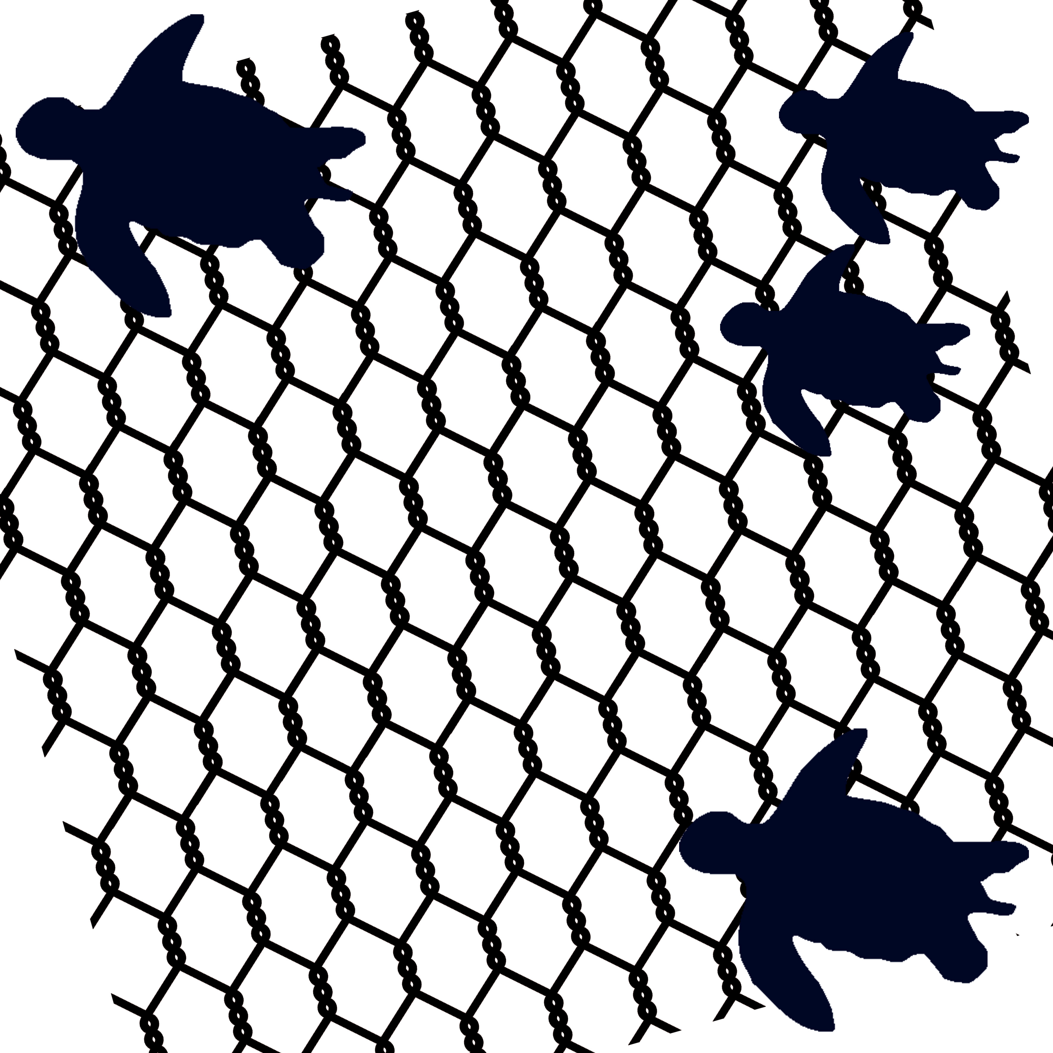 wire and swimming turtle,  turtles   suits 12 x 12