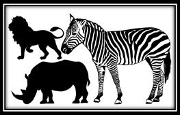 zebra ,lion and rhinocerous-110 x 180 mm min buy 3
